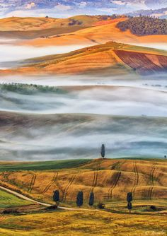 Tuscany colours and terracces