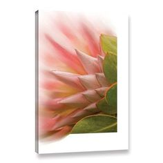 ArtWall Protea Blossom' by Ramona Murdock Removable Wall Decal Size: Dinosaur Wall Decals, Polka Dot Wall Decals, Butterfly Wall Decals, Animal Wall Decals, Flower Wall Decals, Nursery Wall Decals, Wall Canvas, Canvas Art, Canvas Size