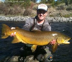 This lunker brown trout is the fish of a lifetime!!