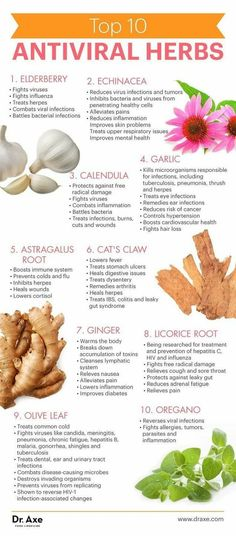 Holistic Health Remedies - Antiviral herbs build your immune system and protect the body from viruses. Here are the top 10 antiviral herbs, along with benefits and healthy recipes. Holistic Remedies, Natural Health Remedies, Natural Cures, Natural Healing, Herbal Remedies, Natural Treatments, Natural Foods, Holistic Healing, Acne Remedies