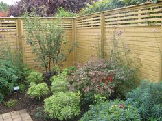 Jacksons Fencing, Front Gardens, Fence, Nursery, Outdoor Structures, Plants, Garden Ideas, Outdoors, Design