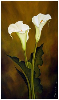 Pin Cuadro Oleo Calas Romanticas on Pinterest Art Floral, Pictures To Paint, Art Pictures, Fabric Painting, Lily Painting, Calla Lily, Botanical Illustration, Flower Art, Beautiful Flowers