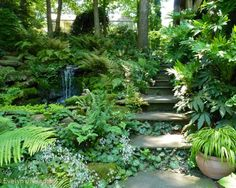 Jay Sifford Garden Design's Design, Pictures, Remodel, Decor and Ideas