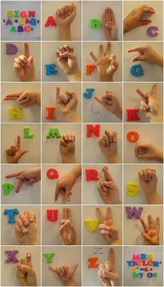 Very cute class auction idea. Use Montessori moveable alphabet Sign Language Words, Sign Language Alphabet, Baby Sign Language, American Sign Language, Alphabet Signs, Sign Letters, Learn Sign Language, Sign Language Colors, Sign Language For Toddlers