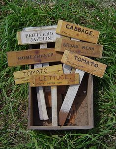 Home made wooden plant labels Garden tending