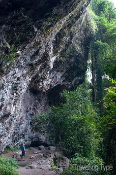 Here's a Northern Rivers heritage trail in NSW that will take you to abandoned sites, old caves and forests - wild places with a story to tell. Rainforest Locations, Go Hiking, Australia Travel, Time Travel, Places To Go, Trail, National Parks, Rivers, World