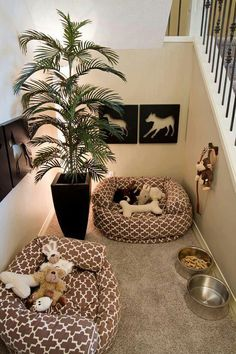 A corner decorated specifically for your pets (our other babies) !
