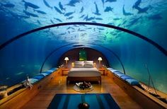 Can u imagine how cool this would be?!?!  The Underwater Bed, Conrad Maldives Rangali Island, Maldives