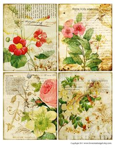 4x5 Vintage Birds Flower Rose Butterfly Botanical ledge French ATC Background Gift Tags Labels Note Cards Digital Collage Sheet Images Sh156. $3.99, via Etsy.