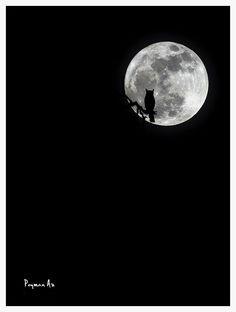 Full moon ... against the light