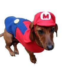 Mario Dog Costume http://cooldogcostumes.com/product/mario-dog-costume/