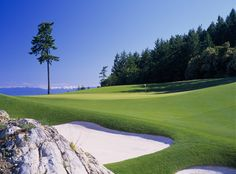 Fairway of the 13th hole, Mountain Course... Photos & Videos of The Westin Bear Mountain Golf Resort & Spa | Victoria, BC