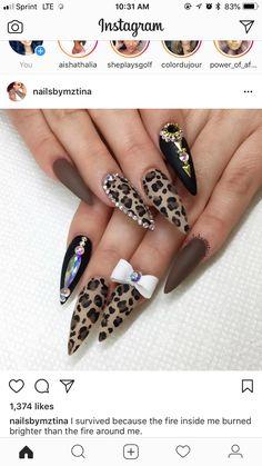 Beauty Tips, Beauty Hacks, Get Nails, Stiletto Nails, Nail Inspo, Nail Ideas, Cheetah, Nail Designs, Nail Art