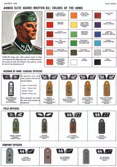 Waffen SS Uniform ranks & collars