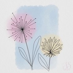 Iris, Watercolor Paintings, Dandelion, Natural, Flowers, Plants, Instagram, Watercolor Drawing, Flora