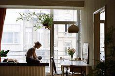 Love windowseats