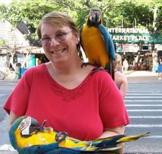 Parrots in paradise. Submitted by Robin Christenson on Facebook. #pinHawaii