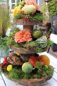 Fru Pedersens have - Herbst dekoration Thanksgiving Decorations, Halloween Decorations, Most Beautiful Gardens, Flower Pots, Flowers, Christmas Design, Winter Garden, Flower Decorations, Garden Pots