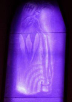 detalhe do violeta | by Fabio Panico