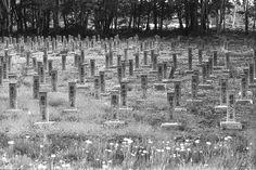 Kabato Prison Graveyard for prisoners 1881 - 1917 Shinotsuyama, Tsukigata, Hokkaido. by threepinner