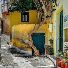 Places Around The World, Around The Worlds, Beautiful World, Beautiful Places, Old Style House, Greece Pictures, Greek Blue, Cradle Of Civilization, Yellow Art