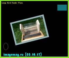 Large Bird Feeder Plans 103303 - The Best Image Search