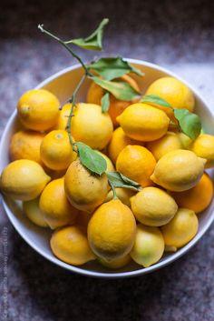 Bowl full of organic meyer lemons on the counter by catklein | Stocksy United
