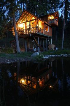 Canadian log tree house