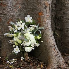 These arrangements consist of mostly clematis, but also have eucalyptus, viburnum, and wild sweet pea in them.