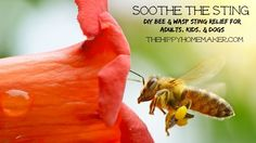Soothe the Sting - DIY Bee Sting & Wasp Sting Relief for Adults, Kids, & Dogs