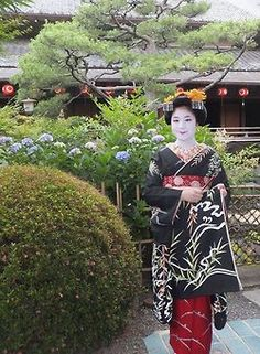 Debut of maiko Umesaku in Kamishichiken - 19th June 2014(SOURCE)