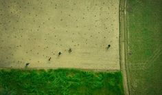 Gorgeous Scenes Of Bangladesh From Above by Shamim Shorif Susom #inspiration #photography