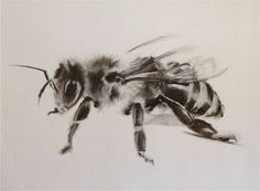 "Saatchi Art Artist Calla Beddow; Drawing, ""Apis 2"" #art"