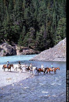 Horseback riding in Banff National Park.