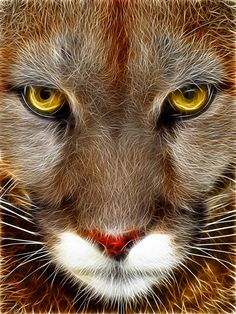 fractal animal | Cougar: (Ver. 2) Fractalius Re-Edit by nerdboy69 on deviantART