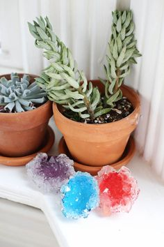 Colorful Homegrown Crystals: Crystals and geodes are all the rage right now, so help your loved ones get in on the accessory trend with some homegrown crystals.