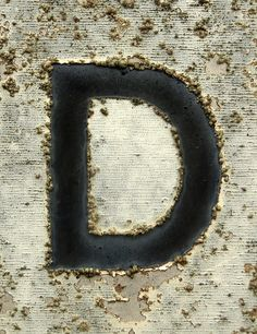 the letter 'd'