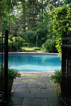 A Pool in the Clearing
