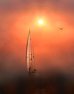 sail away in the sunset