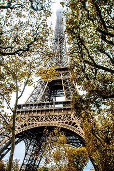 Lace & Lilacs » Paris, France (my first visit: autumn 2014)