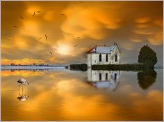 cyberanto:    Another World by Jean-Michel Priaux on Flickr.