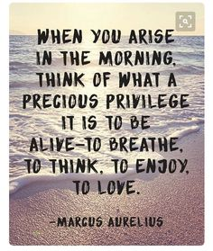 It's a great morning every morning - it's the start of a new day! Enjoy your day, make it a good one #life #love #positivity