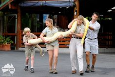 2fe714d069ea37 111 Best Australia Zoo Steve Irwin images in 2019
