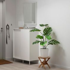 Ikea Fake Plants, Fake Plants Decor, Faux Plants, Plant Decor, Potted Plants, Indoor Plants, Indoor Outdoor, Water Plants, Plantas Indoor