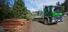 timber-transport-collecting-boles-with-the-arocs-2651-l-header-02.jpg (1280×600)