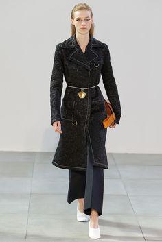 Céline Spring 2015 Ready-to-Wear Fashion Show - Taylor Nicole (NEXT)