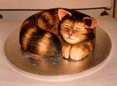 cat cake - Szukaj w Google