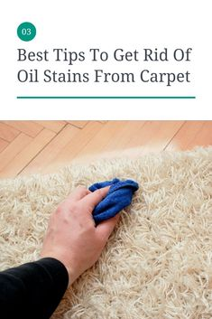 12 Best Tips To Clean Carpet At Home Images How