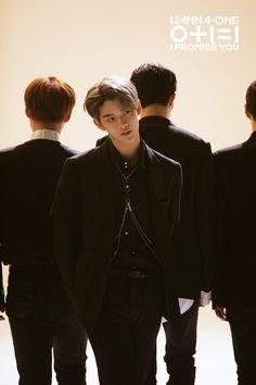 JinYoung (Wanna One) Daniel Jihoon Minhyun Seongwu Kuanlin Sungwoon Woojin JinYoung Jaehwan Daehwi Jisung Jinyoung, Guan Lin, Fandom, Lee Daehwi, I Promise You, Kim Jaehwan, Ha Sungwoon, Produce 101, Seong