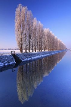 Canale Vacchelli, Mediterranean Area, Cremona District, Lombardy, Generic Location_ Italy: